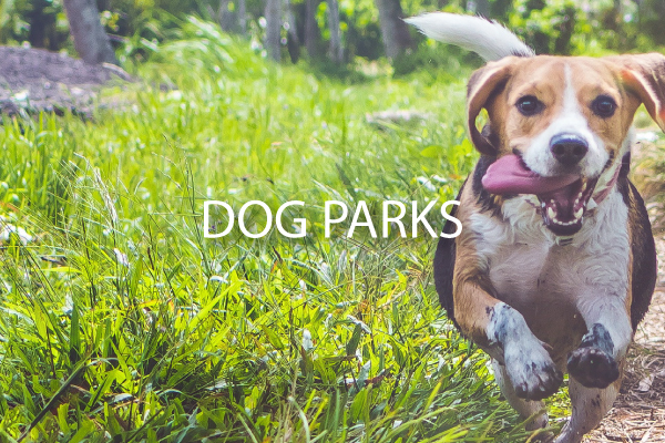 Lifestyle Buttons - Has Dog Parks