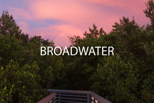 Broadwater St Petersburg Neighborhood guide