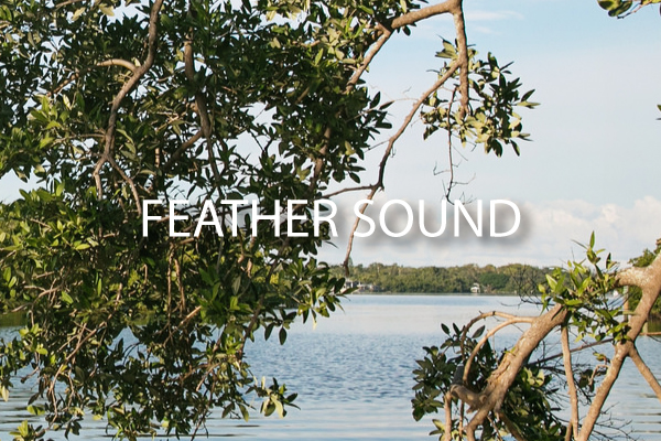Neighborhood Guide for Feather Sound