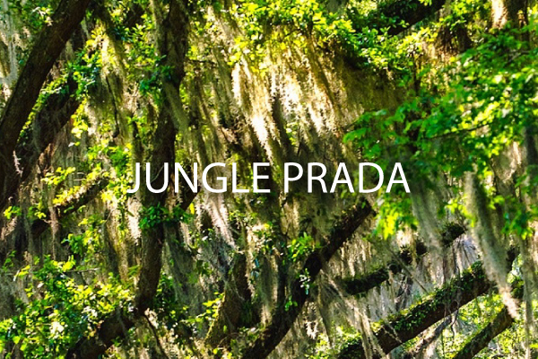 Jungle Prada - St Petersburg Neighborhood guide