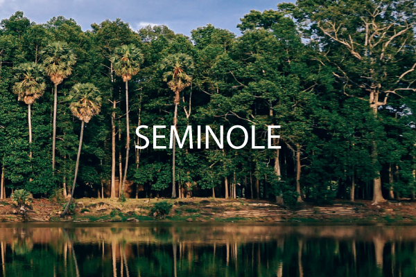 Neighborhood Guide for Seminole