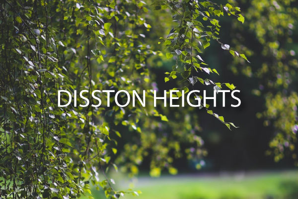 Disston Heights Neighborhood